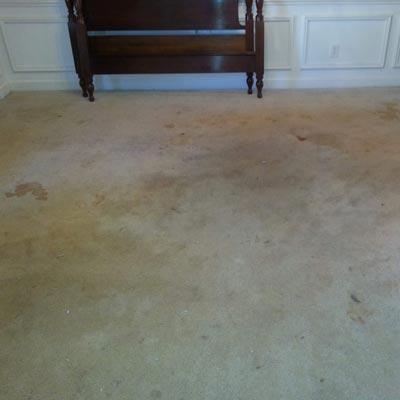 Before-Carpet